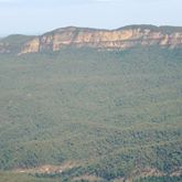 Blue Mountains1.jpg